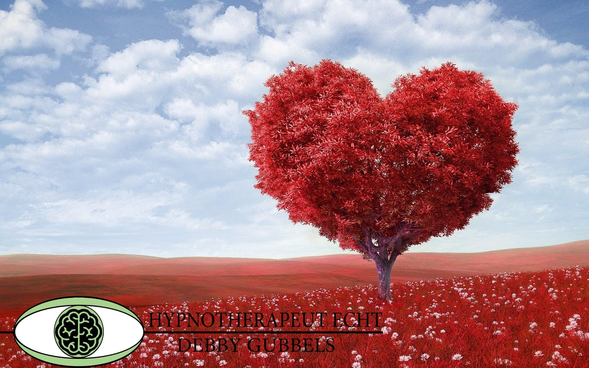 Hypnotherapeut Echt Debby Gubbels Van angst naar liefde